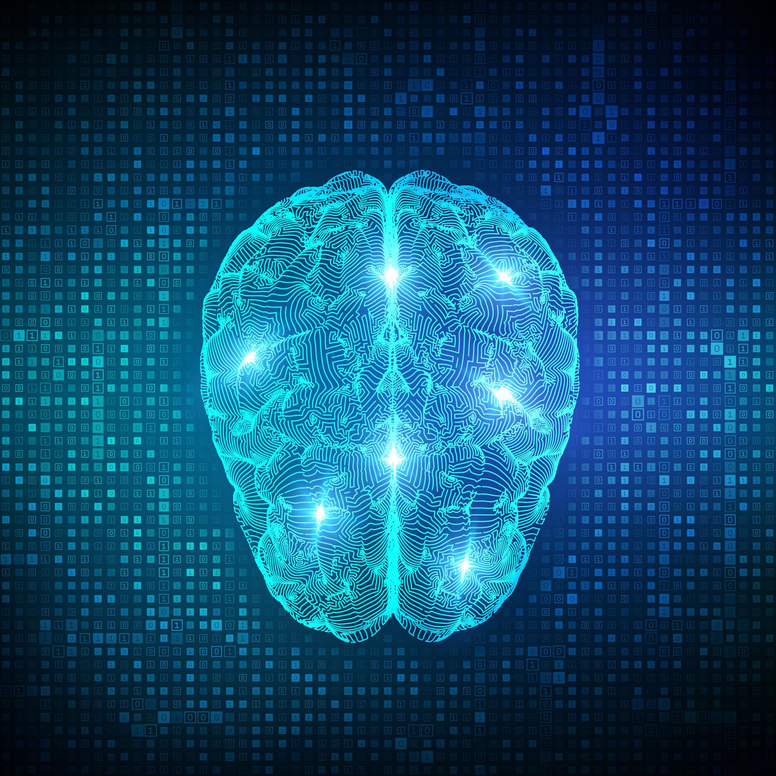 Hvordan forbedre din flytende intelligens hoyere IQ test Mensa
